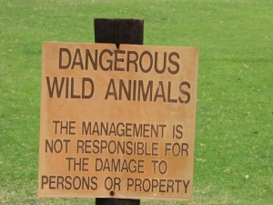 Dangerous Wild Animals